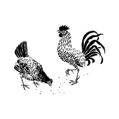 Animals - Birds - hen and rooster - Public Domain Clip Art - Polyvore