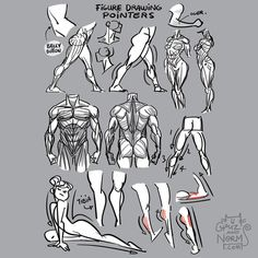 Tuesday Tips - Figure Drawing Pointers A few things I keep in mind while I'm figure drawing. From small details that suggest form and volume to larger concepts like silhouette, direction and tension.