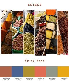Interior trends 2013/2014. Edible.   Spicy date