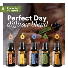 When you choose doTERRA, you are choosing essential oils gently and carefully distilled from plants that have been patiently harvested at the perfect moment by experienced growers from around the world for ideal extract composition and efficacy. Doterra Diffuser, Essential Oil Diffuser Blends, Doterra Blends, Doterra Essential Oils, Reiki, Essential Oil Combinations, Essential Oils Guide, Aromatherapy Oils, Osho