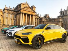 Nice night Blenheim Palace for SVJ UK launch due to Lamborghini hrowenlamborghini urus lamborghini Lamborghini Urus Interior, Lamborghini Cars, Ferrari, Dream Cars, My Dream Car, Rich Cars, Lux Cars, Blenheim Palace, Jeep Cars