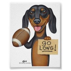 Go long. Two of my favorite things -Dachshunds & football!