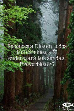 Cuenta con él en todos tus caminos, y él enderezará tus sendas. - Proverbios 3:6  http://www.bible.is/SPNBDA/Prov/3/6
