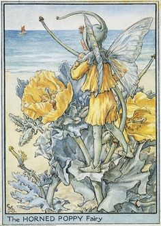 FLOWER FAIRIES/BOTANICALS: The Horned Poppy Fairy; This is an original vintage Cicely Mary Barker Flower fairies colour print. It is not a modern reproduction, approximate size x x 3 inches Cicely Mary Barker, Flower Fairies, Kobold, Fairy Pictures, Vintage Fairies, Beautiful Fairies, Fantasy Illustration, Fairy Art, Faeries