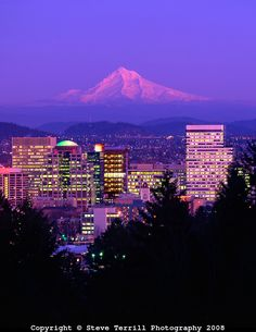 Portland skyline & Mt. Hood in alpenglow viewed from Washington Park in the West Hills of Portland.