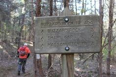 Travel, Hike, Eat. Repeat.: buzzard rock north hike | george washington national forest