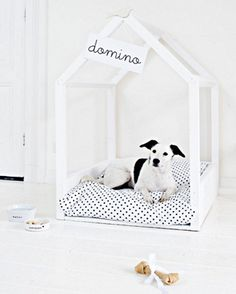 Taking care of your pet goes beyond giving them food and clean water; you can also do a pawsome bed upgrade! Get inspired by the DIY Pet Bed Collection. Diy Pet, Diy Dog Bed, Cute Dog Beds, Diy Pour Chien, Dog Milk, Dog Rooms, Ideas Hogar, Animal Projects, Diy Projects