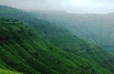 Maharashtra's very own strawberry land - Panchgani and Mahabaleshwar.