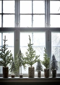 5 Mini Christmas Tree Ideas For Small Spaces (my scandinavian home) Artificial fir tree as Christmas decoration? An artificial Christmas Tree or even a real one? After Christmas, Noel Christmas, Rustic Christmas, White Christmas, Christmas Tree Simple, Christmas Cactus, Christmas 2017, Christmas Window Display Home, Christmas Tree Ideas For Small Spaces