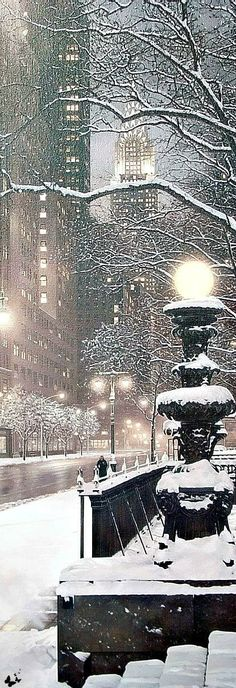 New York City takes on a different beauty in the winter snow. Christmas Scenes, Winter Christmas, Winter Snow, Xmas, Winter Schnee, I Love Snow, Winter Magic, Snowy Day, Snow Scenes
