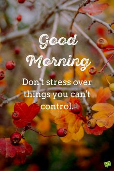 Image result for good morning, busy day quotes blingee