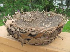 A model bird nest from mud and other natural materials {from The Chocolate Muffin Tree}