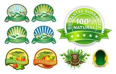 Free Vector Product Labels