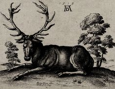 © Albrecht Dürer