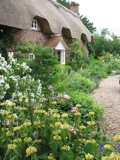 Cottage Garden in Berkshire - lovely soft washed out colour