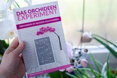 Das Orchideen Experiment Orchideen im Wasser kultivieren Experiment, Cover, Books, September, Orchids In Water, Growing Plants, Low Maintenance Garden, Roots, Libros