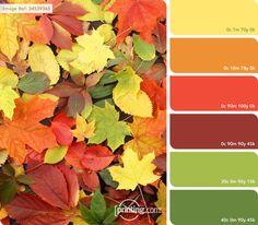Resultado de imagen para colores de la naturaleza