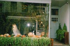 #Hillenius #Couture #Shop #Window