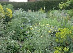 east lambrook manor garden pictures - Google Search