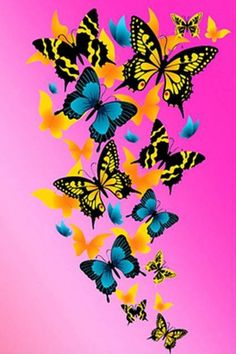 A group of colored butterflies