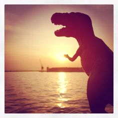 SunseT over the sea... stay T-Tuned to discover where T-Rex is from today! T-✌