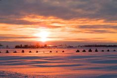 WInter Sunrise - Gallery - Bonnie Sitter | pmp-art.com