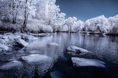 5 Creative Ways to Process Infrared Photographs in Photoshop