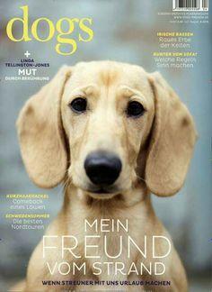 Mein Freund vom Strand. Gefunden in: Dogs, Nr. 4/2015