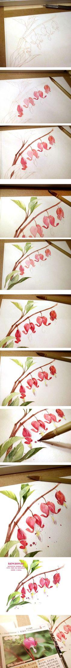 【绘画教程】荷包牡丹-插画家园-插画家园原创水彩插画-插画家园【小白的花花世界——第四辑】-1-插画家园