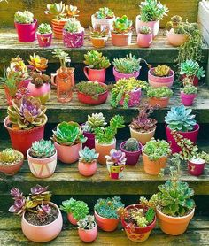 80 Awesome Spring Garden Ideas for Front Yard and Backyard 80 Awesome Spring Garden Ideas for Front Yard and Backyard garden In modern cities, . Succulent Landscaping, Succulent Gardening, Cacti And Succulents, Planting Succulents, Cactus Plants, Garden Landscaping, Planting Flowers, Landscaping Ideas, Green Plants