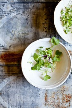 Micro greens by tartelette, via Flickr