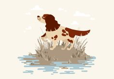 In this tutorial we'll go through the process of drawing a simple autumn scene with a cartoon-style hunting dog. We'll be using the versatile drawing tools of Adobe Illustrator and custom artistic brushes to create a subtle textured effect on the fur of our spaniel, making it look more interesting and realistic. Let's get started! | Difficulty: Intermediate; Length: Medium; Tags: Animals, Adobe Illustrator, Illustration, Drawing, Cartoon, Vector, Textures, AI Brushes, How-To