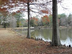 Lake Bailey, Petit Jean State Park, Arkansas Petit Jean State Park, Canoeing, Arkansas, Lakes, State Parks, Places Ive Been, Trips, Travel, Viajes