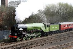 Tornado British Railways, Green