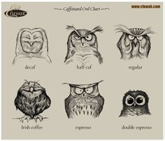 What if owls could drink coffee...?