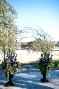 Curly Willow Arch.  Photo courtesy of Stout Photography.  www.ambiencefloral.com