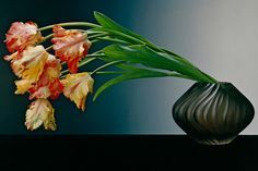 Robert Mapplethorpe's Sensual Flowers | AnOther