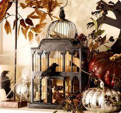 Halloween Bird Cage