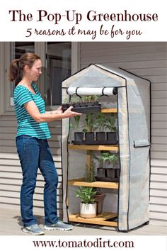 A mini greenhouse for your patio, deck or balcony protects tender plants in both spring and fall. Start seeds early to get a jump on the season! Greenhouse Farming, Greenhouse Growing, Greenhouse Plans, Greenhouse Tomatoes, Diy Small Greenhouse, Backyard Greenhouse, Greenhouse Wedding, Aquaponics Diy, Aquaponics System