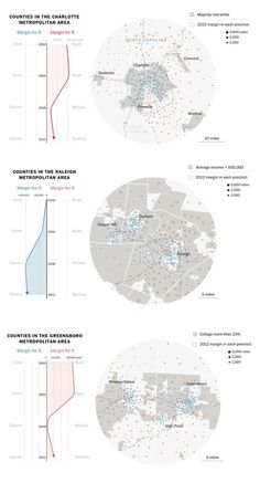 Visualizing How North Carolina's Electorate Is Starkly Divided by Race, Income, and Increasingly, Education #becomingvisual #datavisualization