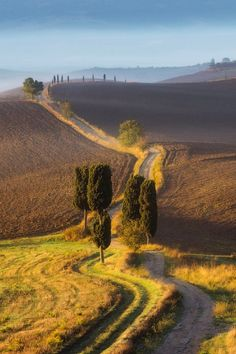 Country road in Val D'orcia bij Siena, Toscane. Places To Travel, Places To See, Wonderful Places, Beautiful Places, Under The Tuscan Sun, Photos Voyages, Tuscany Italy, Venice Italy, Sorrento Italy