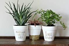 DIY Gold Foil Lettering on Flower Pots   so simple, yet so beautiful!