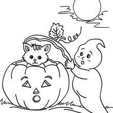 Ghosts and pumpkin coloring page - Coloring page - HOLIDAY coloring pages - HALLOWEEN coloring pages - GHOST coloring pages