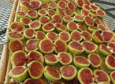 Let's discover the fico mandorlato, a Slow Food presidium produced in the Salento area of Puglia