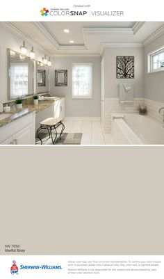 I found this color with ColorSnap® Visualizer for iPhone by Sherwin-Williams: Useful Gray (SW 7050).