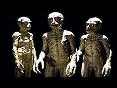 Men are the result of genetic modification of a human by space aliens called the Anunnaki. This is an excerpt of a documentary that discusses history of the Anunnaki and the reason for the necessity to find gold to make monoatomic gold. Aliens And Ufos, Ancient Aliens, Ancient History, European History, American History, Paranormal, Flesh Eating, Best Documentaries, Space Aliens