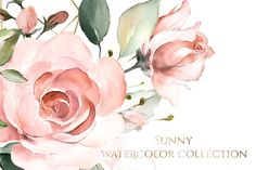 Sunny watercolor floral collection - Illustrations - 13