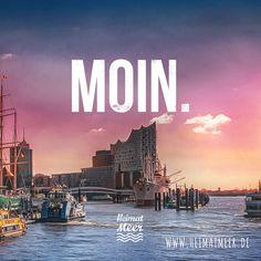 Moin Hamburg. Moin Elbphilharmonie. >>