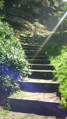 Steps to the Hermit's Hut at Hawkstone Follies. Picnic Spot, Mountains, Places, Nature, Travel, Lugares, Naturaleza, Trips, Viajes