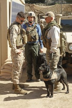 """""""Seek"""" Episode 18 of Season 10  The wife of a Marine who specialized in K-9 bomb detection urges the NCIS team to investigate the recent death of her husband in Afghanistan, on NCIS, Tuesday, March 19 (8:00-9:00 PM, ET/PT) on the CBS Television Network. Pictured: Mark Harmon (right), Sean Murray (center) and Sterling Jones (left) Photo: Monty Brinton/CBS ©2013 CBS Broadcasting, Inc. All Rights Reserved."""
